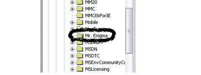 Mr  Enigma en el registro de Windows - Incubaweb - software