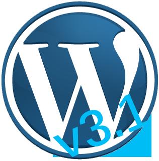 wp logo 311