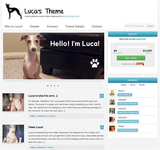 luca-theme-responsive-theme