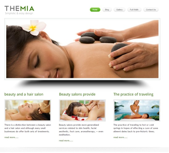 themia-lite-theme-negocios