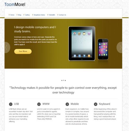 toommorel-wordpress-theme