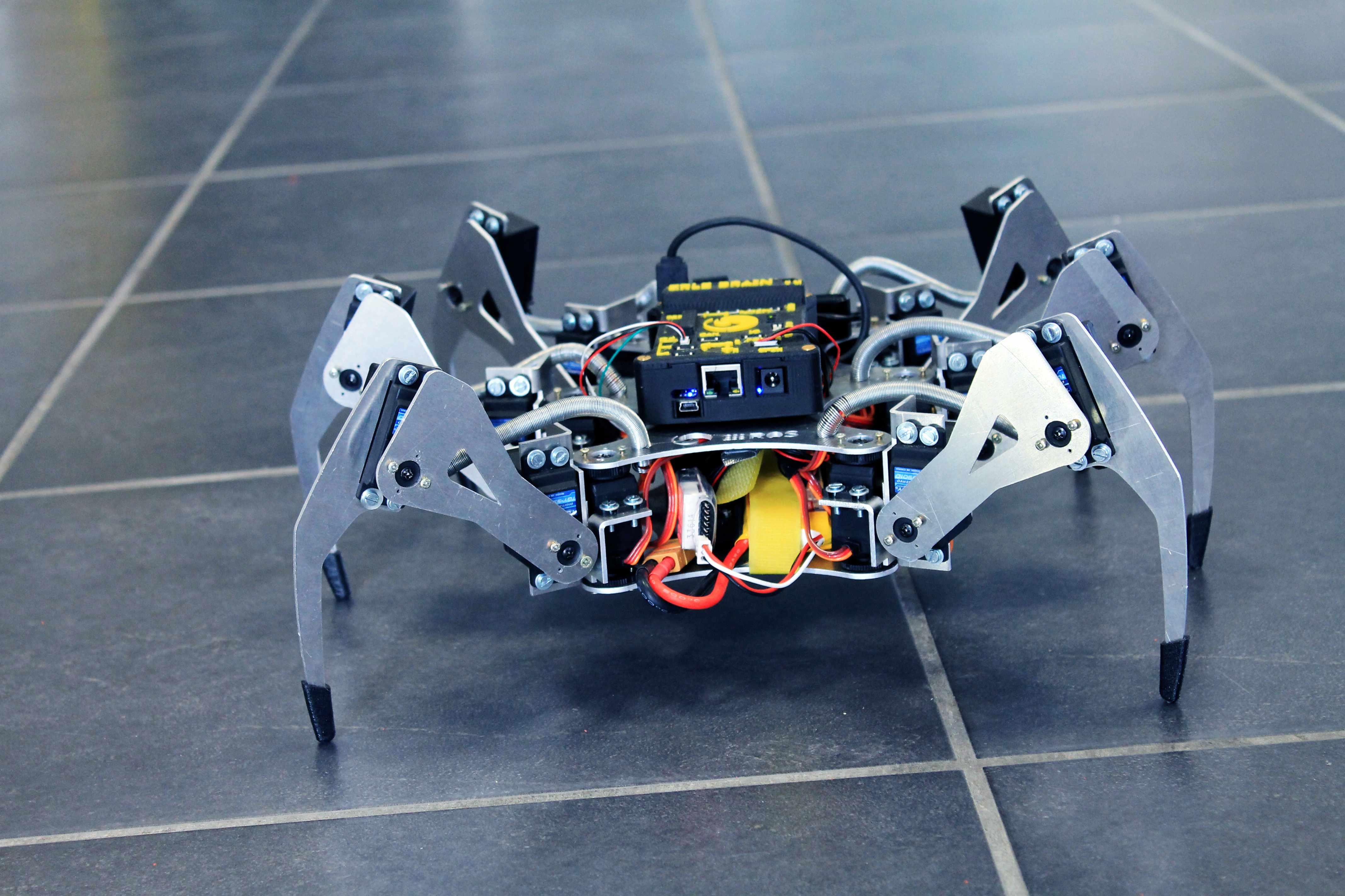Arañas robóticas