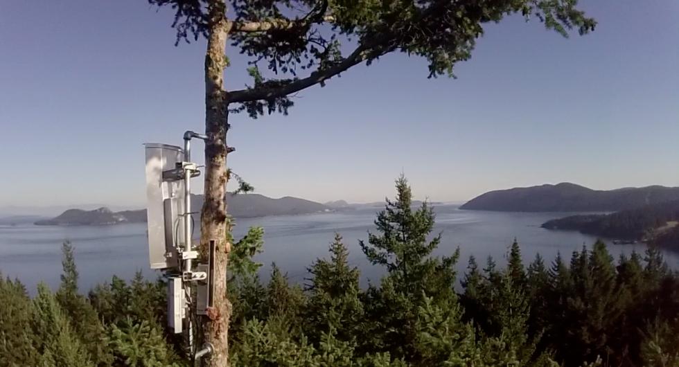 red de Internet de alta velocidad - antenas de radio en los arboles