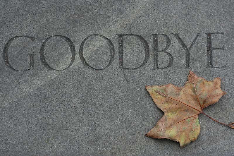 Soportar Flash - Adios