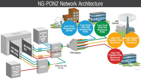 estándar  ng-pon2
