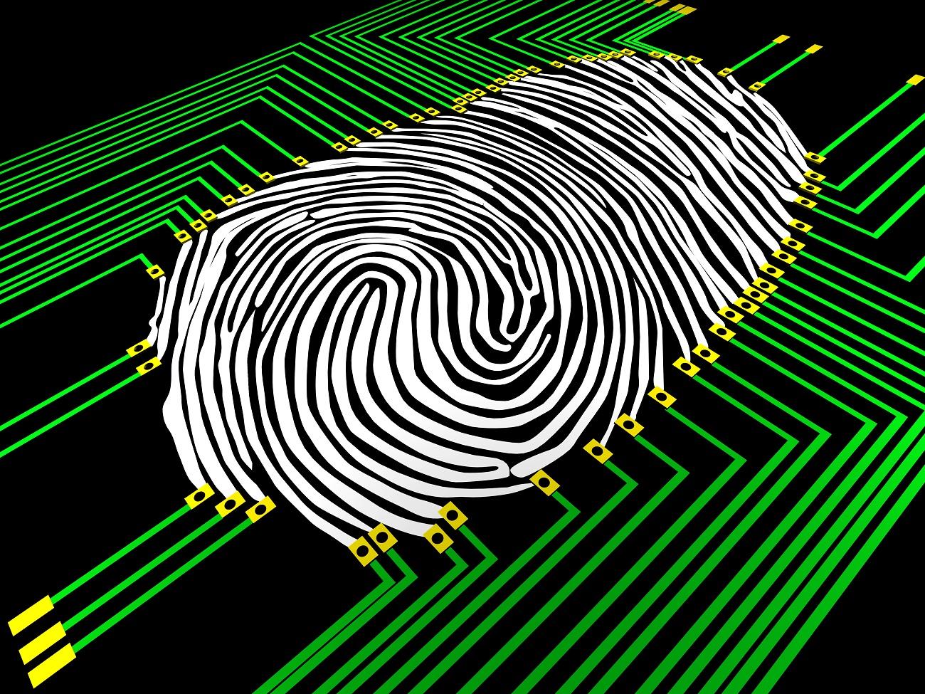 seguridad biometria
