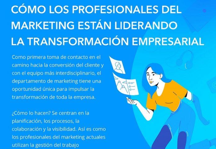 reporte marketing